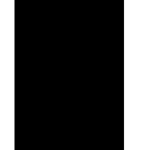 Icona - Allevamento di struzzi - il Cascinetto