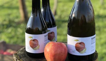 Sidro artigianale di mela