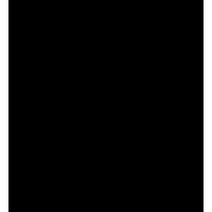 Icona - Pelletteria - il Cascinetto