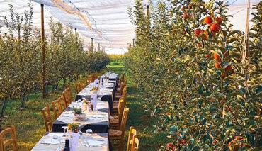 Inaugurazione pranzi nel frutteto