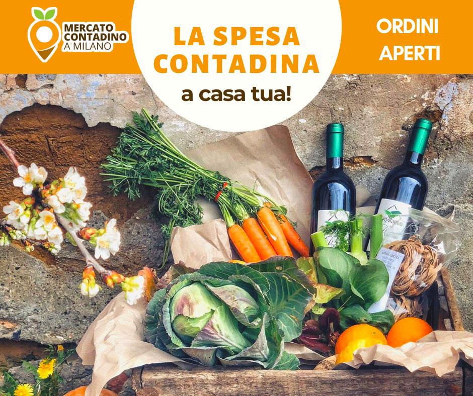 spesa_contadina